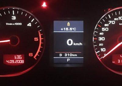 Audi szines oracsoport